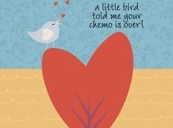 draft_lens17994603_13065875852011_-_little_bird_chemo_